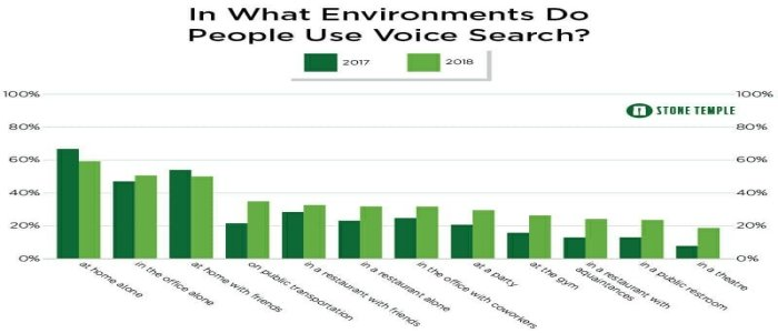 Environment Use Voice Searches