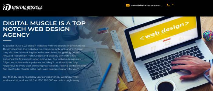web design company- digital-muscle